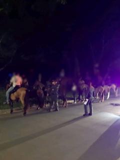 Policía multa a jinetes de cabalgata ilegal en Cali