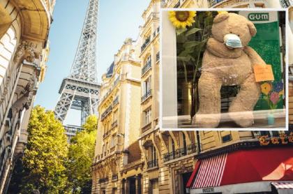 Paisaje urbano de París / Oso de peluche en una vitrina de París