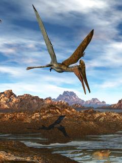Imagen de referencia de un pterosaurio, como el encontrado en Santander, Colombia