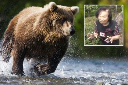 "Con sus propias manos, anciana enfrentó a un osos y lo mandó ""a volar""."