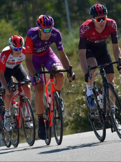 Pelotón en la Vuelta a Burgos
