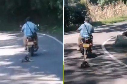 Hombre que arrastró perro en una moto