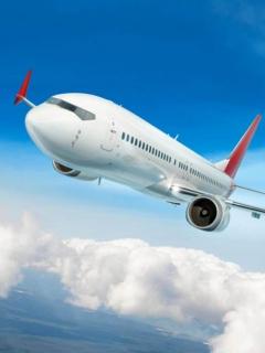 Pelea en un avión por culpa de pasajeros que se negaron a usar tapabocas.