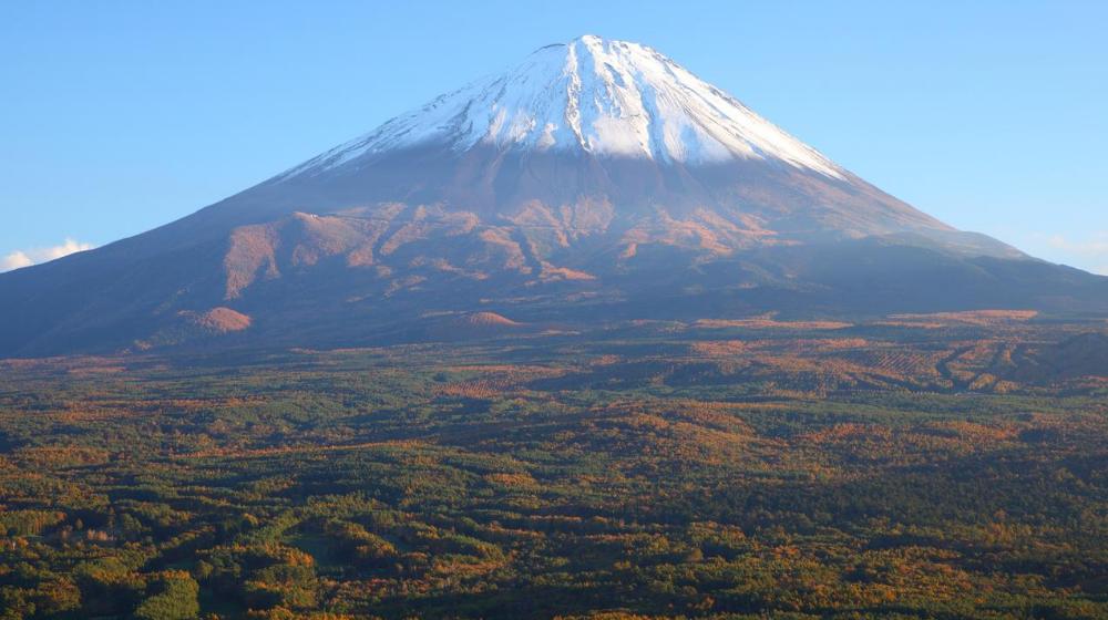 Monte Fuji, bosque de los suicidios.