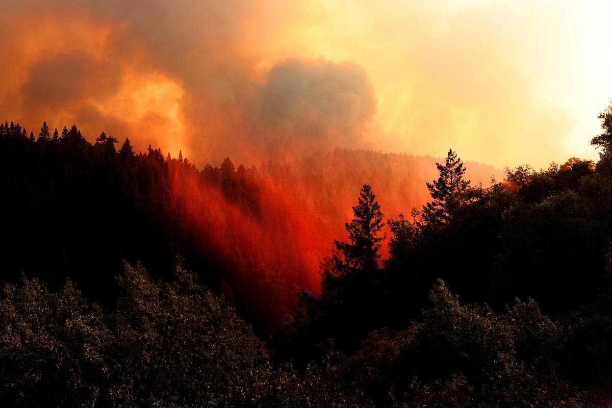 El foco más grande de la región, denominado Complejo Relámpago LNU (al norte de San Francisco), es ahora el segundo incendio más devastador en la historia de California, con más de 127.000 hectáreas destruidas.