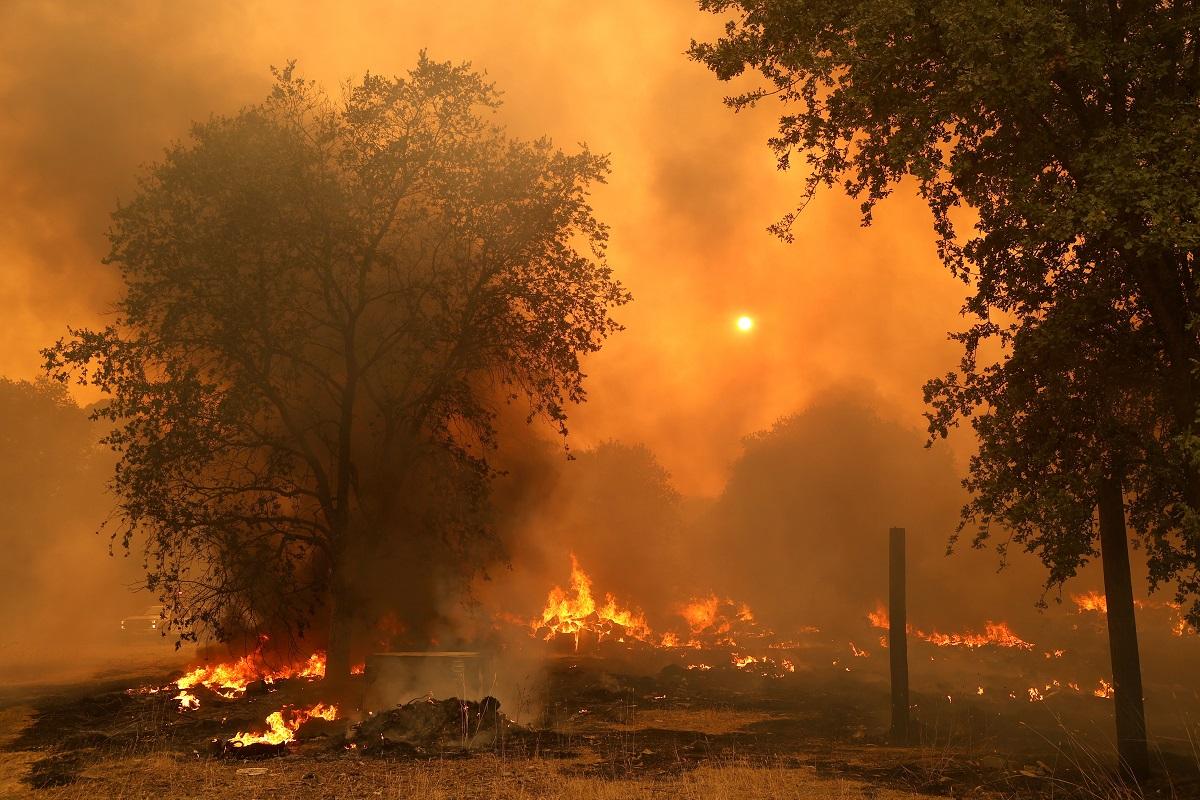 En total, son 300 los focos que se han presentado en todo el estado, incluyendo más de una veintena considerados de gran magnitud. Debido a esto, el gobernador pidió ayuda internacional para combatir las llamas.