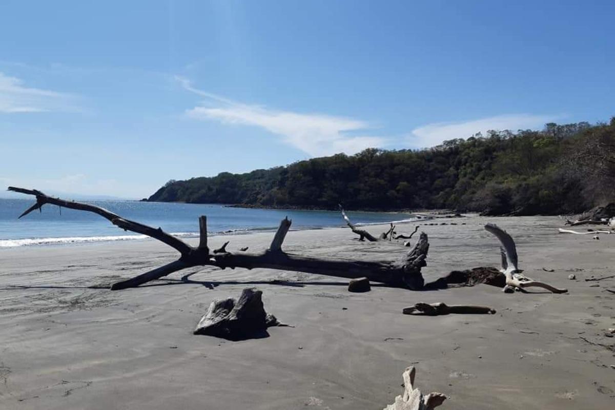 Playa de Isla San Lucas