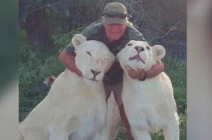 West Mathewson con las leonas que lo mataron