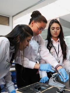 El Sena habilitó más de 49.000 cupos en toda Colombia para ciudadanos interesados en estudiar alguno de sus 269 programas académicos.