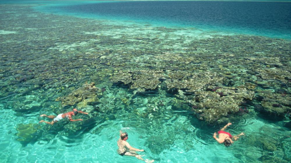 Personas nadando cerca al Gran Agujero Azul de Belice