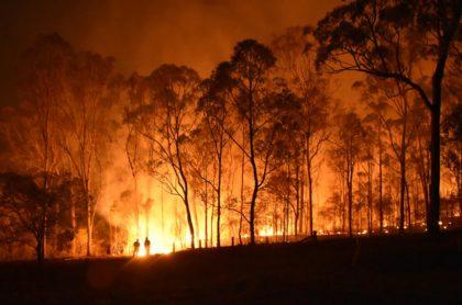 Incendio en bosque ilustra nota de fiesta para revelar género de bebé que desató un voraz incendio