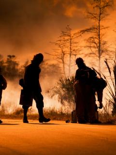 Foto de un incendio forestal ilustra nota sobre un niño que murió abrazado a su perro mientras las llamas los rodeaban, en EE. UU.