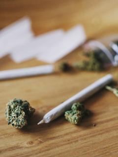 Imagen ilustrativa de la marihuana recreativa, a propósito de su aprobación, en primer debate, en la Cámara de Representantes.