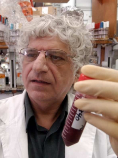 Anticuerpos de las bacterias podrían servir contra COVID-19.
