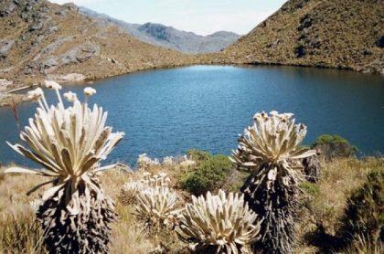 Páramo de Santurbán, zona cercana al proyecto minero Soto Norte, de Minesa, que fue archivado por la Anla.