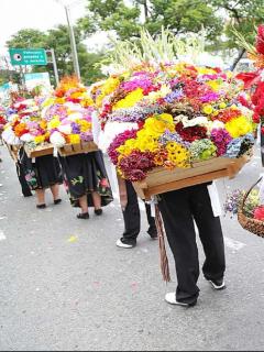 Imagen de la Feria de las Flores, en Medellín, a propósito de su versión 2020.