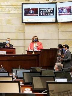 María del Rosario Guerra confirmó que tiene coronavirus y directivas del Senado se aislaron por prevención