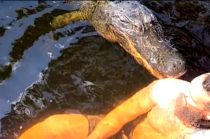 Cocodrilo muerde suavemente a hombre que nadaba con él.