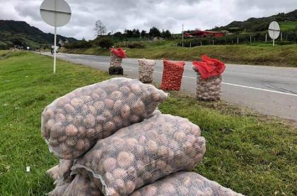 Campesinos de Boyacá salieron a carreteras a vender papa a precios bajísimos