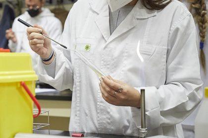 Laboratorio químico (imagen de referencia).