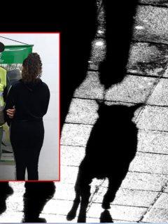 Fotomontaje con la mujer capturada por maltrato animal en Tuluá.