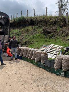 Gobernación de Cundinamarca ayudará a campesinos que venden papa