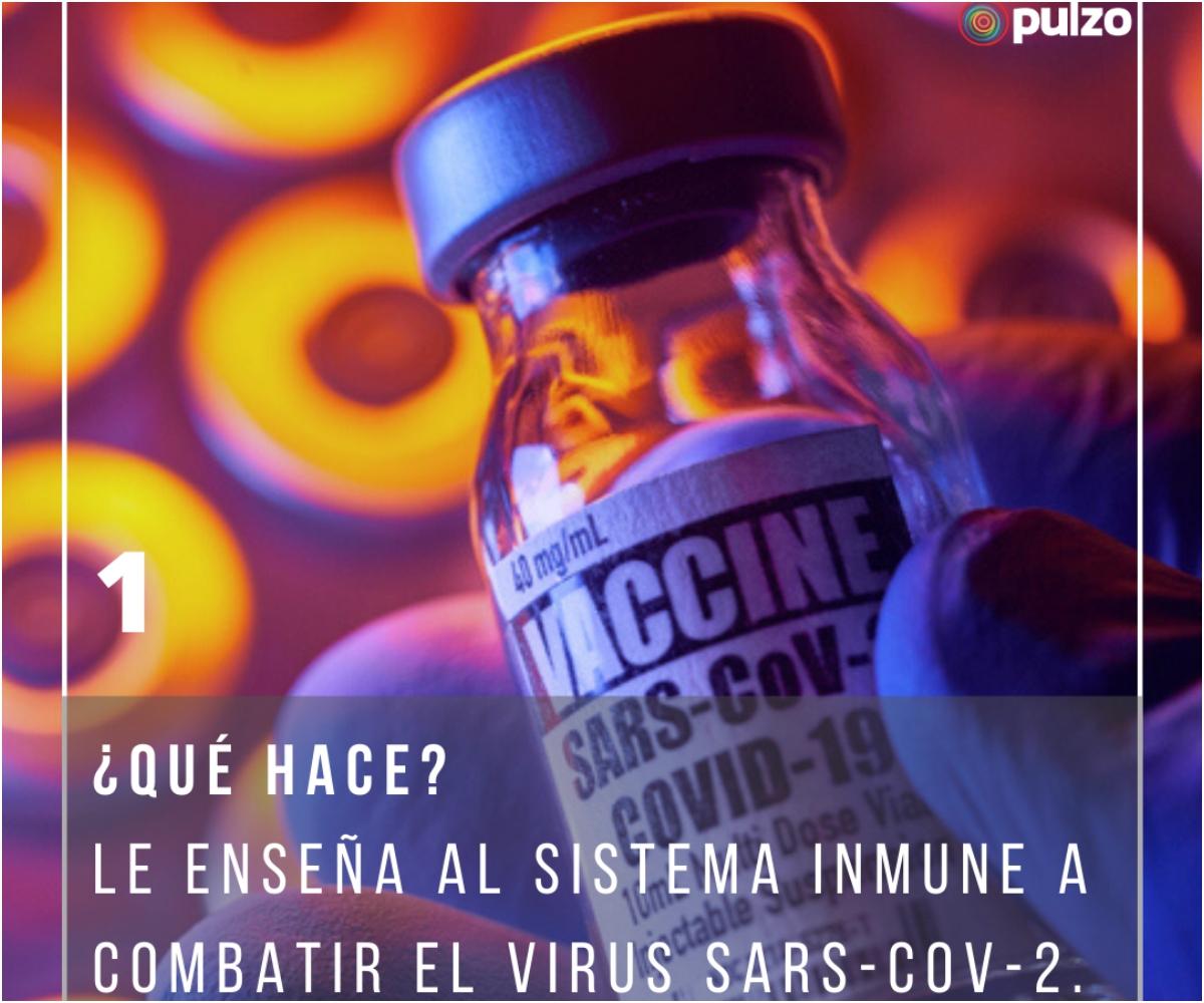Galería: respuestas sobre vacuna de Pfizer contra el coronavirus