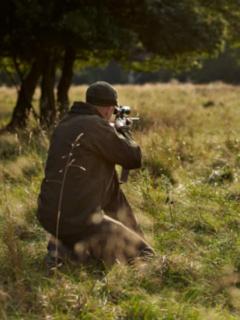 Cazador apunta a ciervo, ilustra nota de hombre mató a su hijo de un disparo al confundirlo con un ciervo