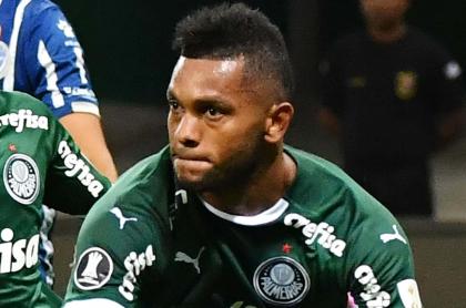 Migeul Ángel Borja podría jugar semifinales de Libertadores con Palmeiras. Imagen de referencia del jugador.