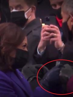 Así fue el saludo de Kamala Harris y Michelle Obama.