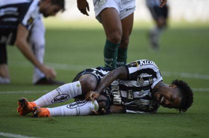 Imagen del juego Santos vs Palmeiras, por la final de la Copa Libertadores.