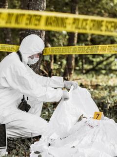 Las fosas comunes fueron halladas el mismo día en el que se encontraron los cadáveres de 4 jóvenes desaparecidos.