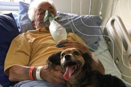 Frederico Lucas Minatto, de 92 años, recibió la inesperada visita de su perrita antes de morir por COVID-19 en Brasil.