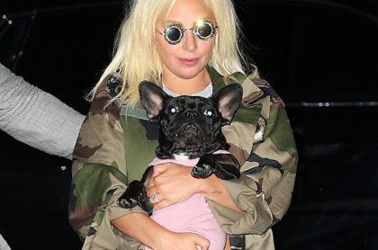 Lady Gaga y una de sus mascotas.