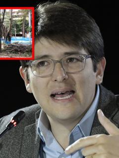 Carlos Galán y Miguel Uribe denuncian tala de árboles en Bogotá.