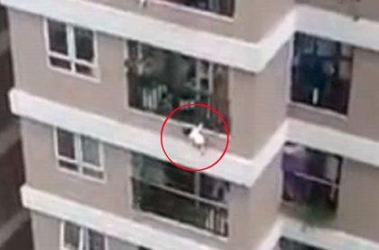 Captura de pantalla de video viral de niña de 3 años que cae desde un piso 12 y domiciliario la atrapa en el aire y la salva