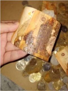 Capturas de pantalla de ahorros perdidos de mujer que guardó monedas con billetes en Malasia