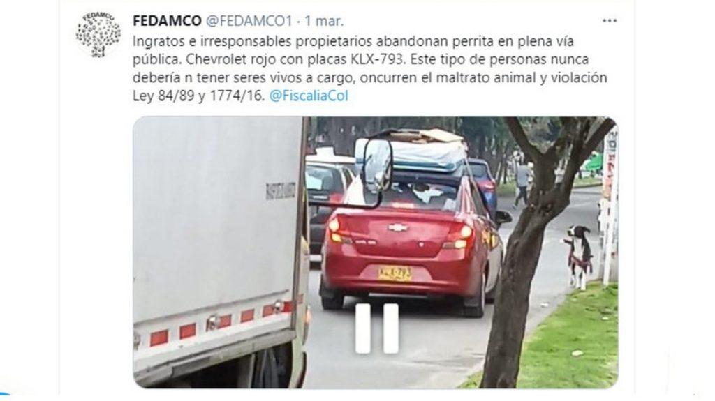 Trino eliminado por Fedamco