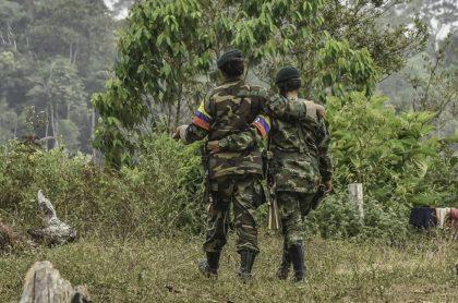 Identifican a otra menor de edad muerta en bombardeo de las FARC.