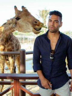 Falcao alimenta a jirafa, ilustra nota de Falcao disfruta con su familia en zoológico; posó asustado con serpiente