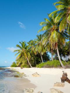 Isla de San Andrés ilustra nota sobre viaje de concejales de Malambo, Atlántico, por el que los critican
