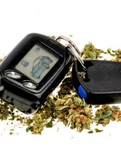 No es permitido conducir bajo los efectos del cannabis.