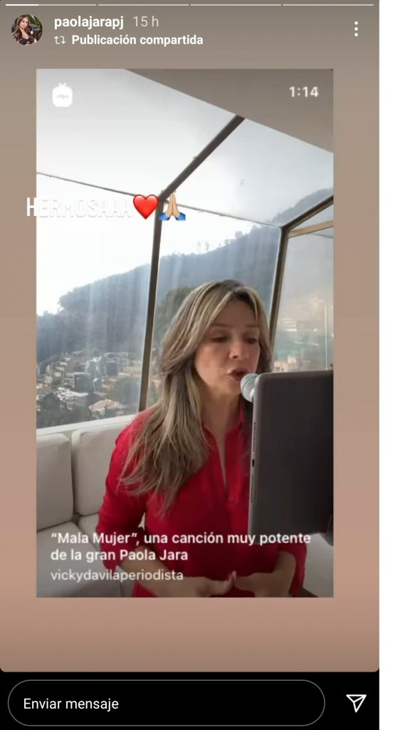 Captura de pantalla historia de Instagram vickydavilaperiodista.
