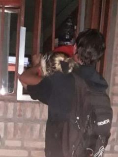 Captura de pantalla de video de mujer embarazada en Argentina se mete a robar y queda atrapada en rejas