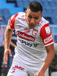 Armenia presta estadio a Santa Fe para Copa Libertadores ante Fluminense. Imagen de referencia del cuadro 'cardenal'.