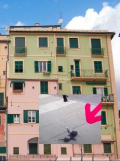 Edificio y captura de pantalla de video de niño de 3 años que cae por ventana de un quinto piso y sobrevive