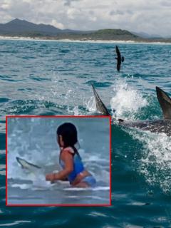 Tiburón y captura de pantalla de video de niña de 6 años tiene espeluznante encuentro con un tiburón
