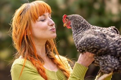 EE. UU. recomienda no abrazar ni besar aves de corral, por contagios