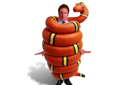Los sueños con culebras o serpientes suelen ser pesadillas.
