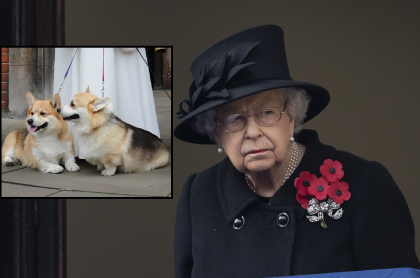Foto de la reina Isabel II, a propósito de la raza de sus perros y cuánto cuesta